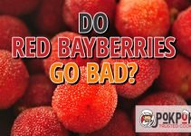 Do Red Bayberries Go Bad?