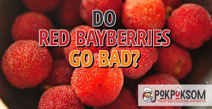 Do Red Bayberries Go Bad