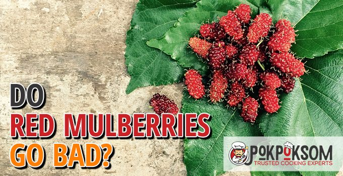 Do Red Mulberries Go Bad