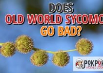 Does Old World Sycomore Go Bad
