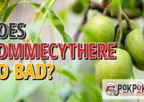 Does Pommeycthere Go Bad?