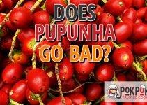 Does Pupunha Go Bad?