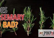 Does Rosemary Go Bad?