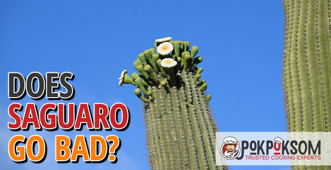 Does Saguaro Go Bad