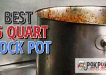 5 Best 16 Quart Stock Pots (Reviews Updated 2021)
