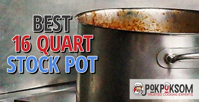 Best 16 Quart Stock Pot