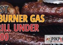 5 Best 2 Burner Gas Grills Under $300 (Reviews Updated 2021)