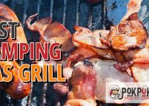 5 Best Camping Gas Grills (Reviews Updated 2021)