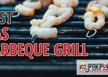 5 Best Gas BBQ Grills (Reviews Updated 2021)