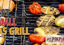 5 Best Small Gas Grills (Reviews Updated 2021)