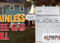 5 Best Stainless Steel Gas Grills (Reviews Updated 2021)