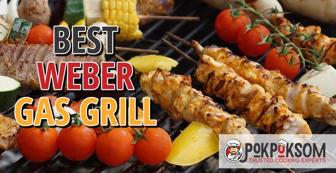 Best Weber Gas Grill