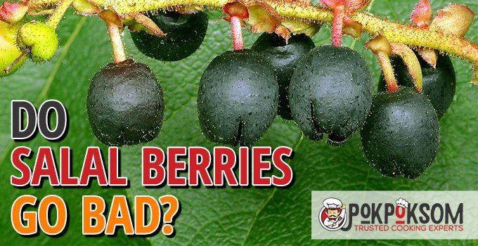 Do Salal Berries Go Bad