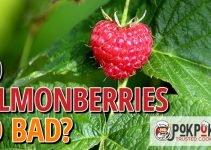 Do Salmonberries Go Bad?