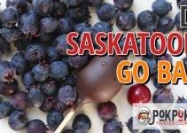 Does Saskatoon Go Bad?
