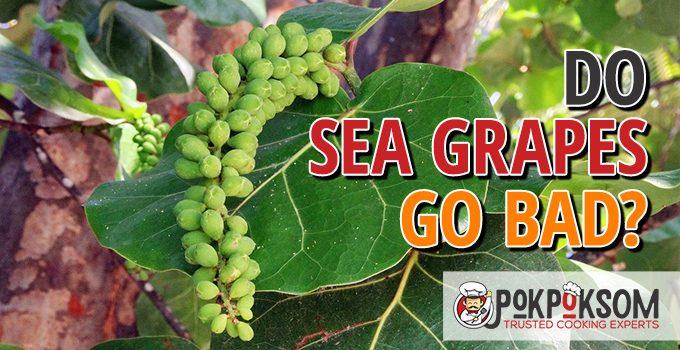 Do Sea Grapes Go Bad
