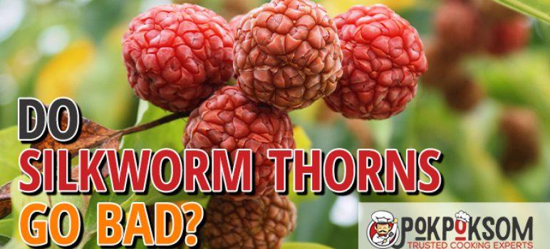 Do Silkworm Thorns Go Bad