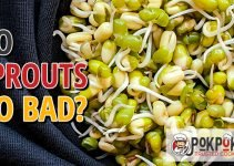 Do Sprouts Go Bad?