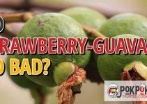 Do Strawberry Guavas Go Bad?