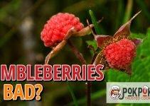 Do Thimbleberries Go Bad?