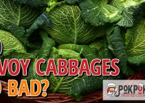 Does Savoy Cabbage Go Bad?