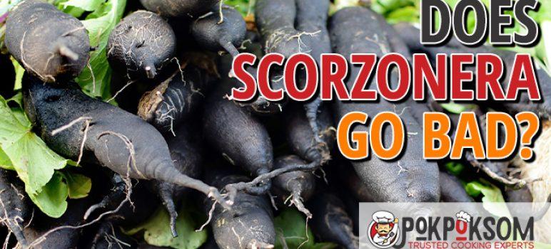 Does Scorzonera Go Bad