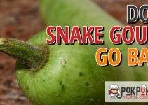 Does Snake Gourd Go Bad?