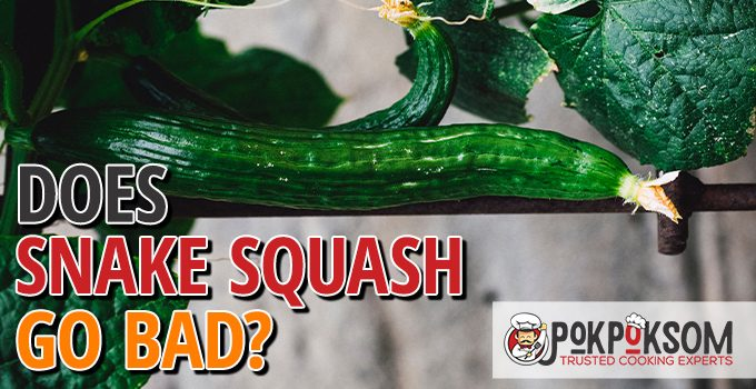 Does Snake Squash Go Bad