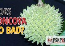 Does Soncoya Go Bad?