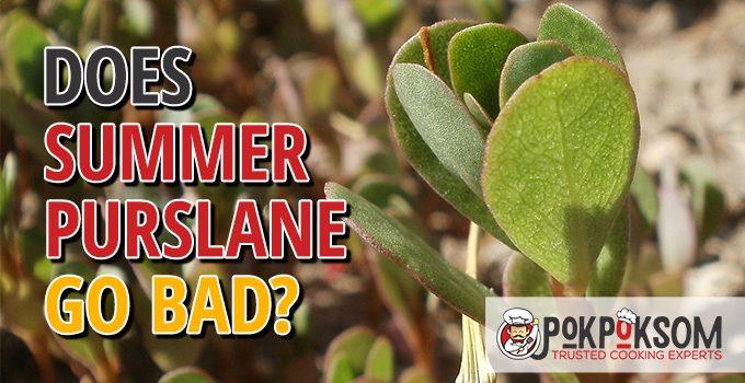 Does Summer Purslane Go Bad