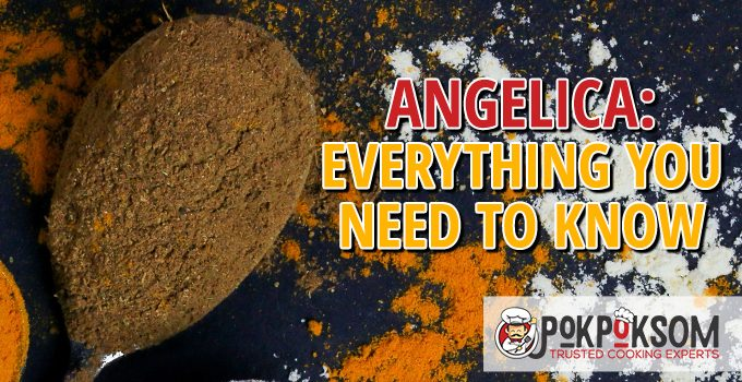 Angelica Everything You Need To Know