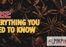 Anise: Everything You Need To Know