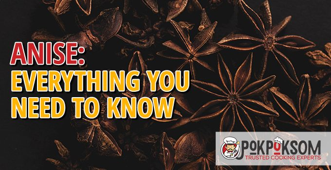Anise Everything You Need To Know