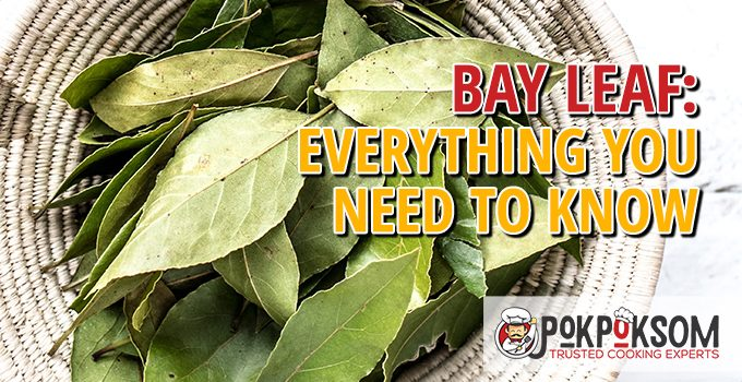 Bay Leaf Everything You Need To Know