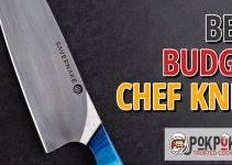 5 Best Budget Chef Knives (Reviews Updated 2021)