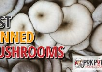 5 Best Canned Mushrooms (Reviews Updated 2021)