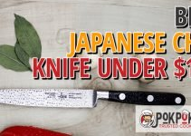 5 Best Japanese Chef Knives Under $100 (Reviews Updated 2021)