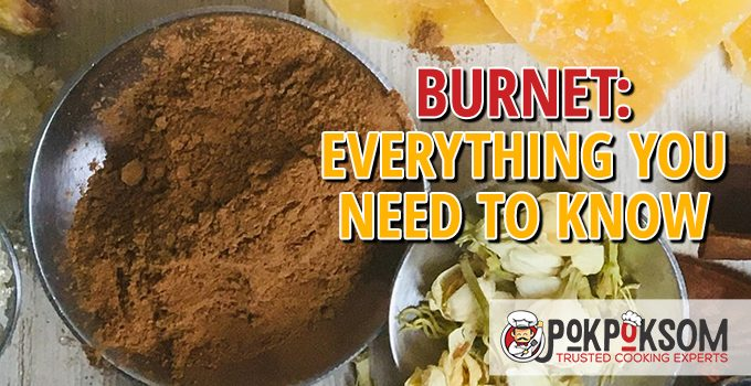 Burnet Everything You Need To Know