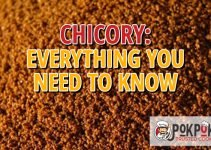 Chicory: Everything You Need To Know