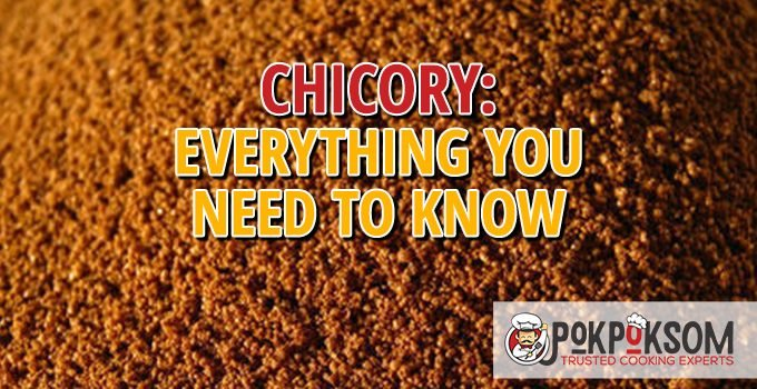 Chicory Everything You Need To Know
