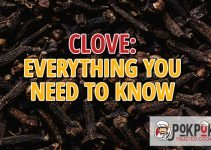 Clove: Everything You Need To Know