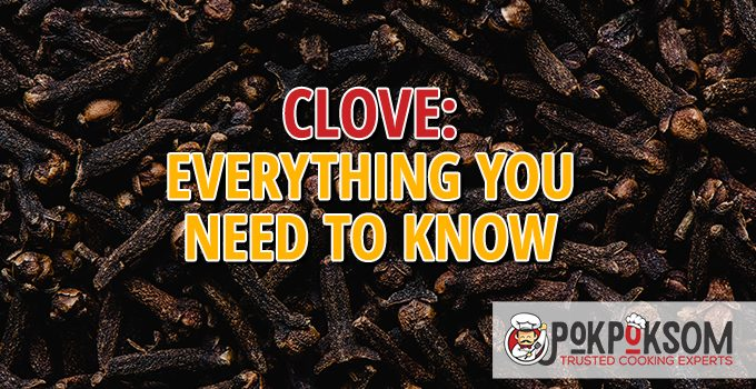 Clove Everything You Need To Know