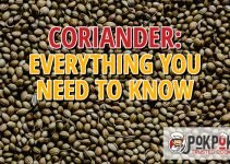 Coriander: Everything You Need To Know