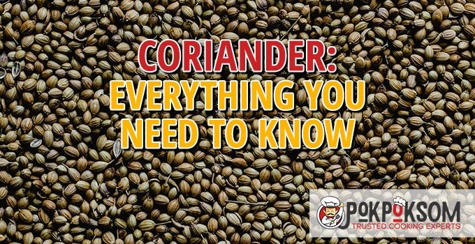 Coriander Everything You Need To Know