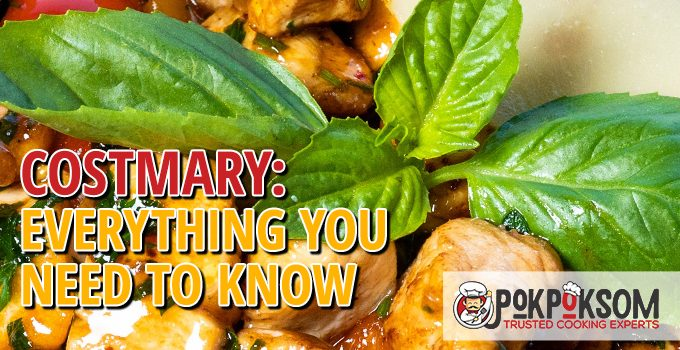 Costmary Everything You Need To Know