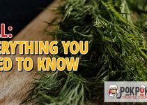 Dill: Everything You Need To Know