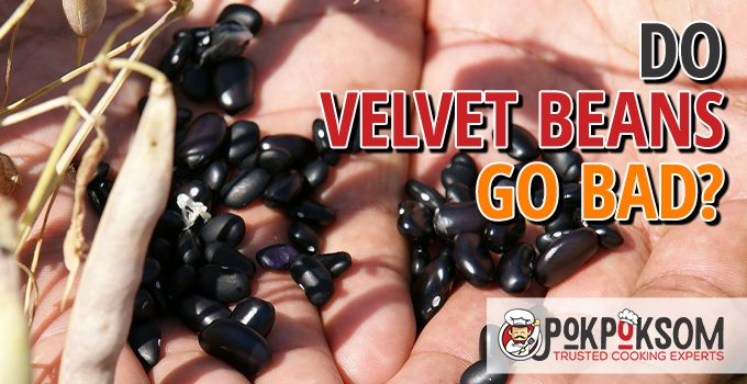Do Velvet Beans Go Bad