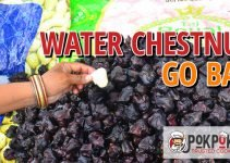 Do Water Chestnuts Go Bad?