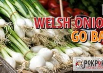 Does Welsh Onion Go Bad?