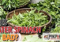 Does Water Spinach Go Bad?